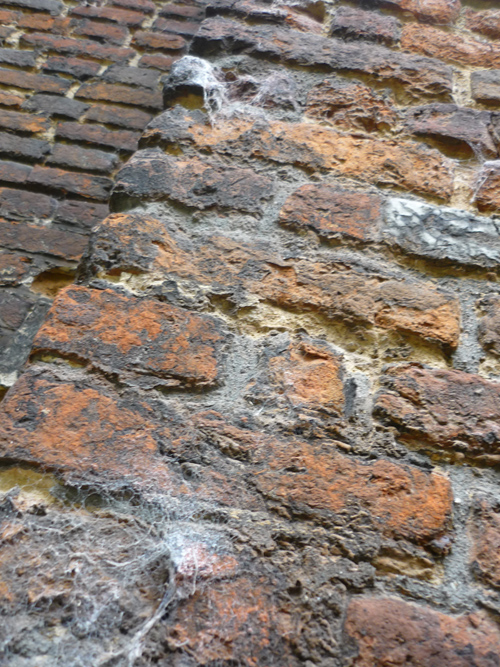Silja Korn, Mauer in Gent