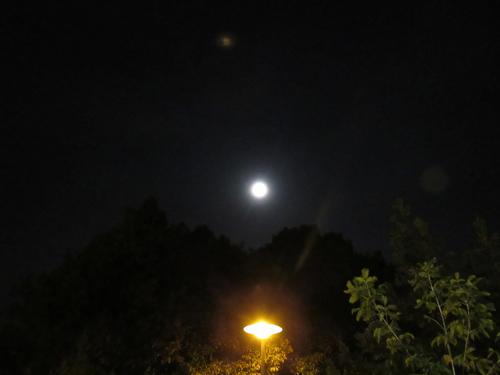 Silja Korn, Mond mit Laterne