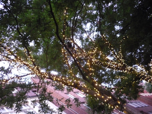 Silja Korn, Baum mit Lampen