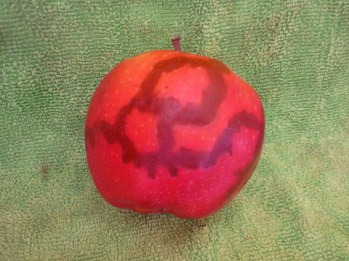 Apfelkunst