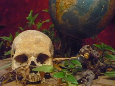 Erde mit Totenkopf