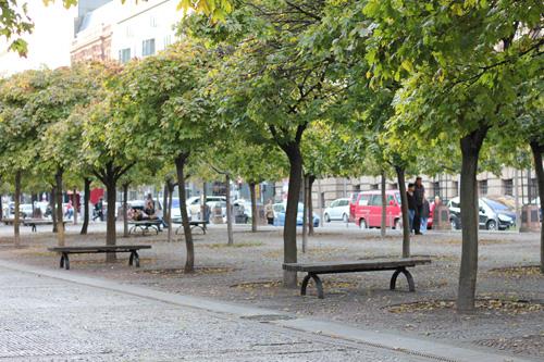 Ein Park in Berlin
